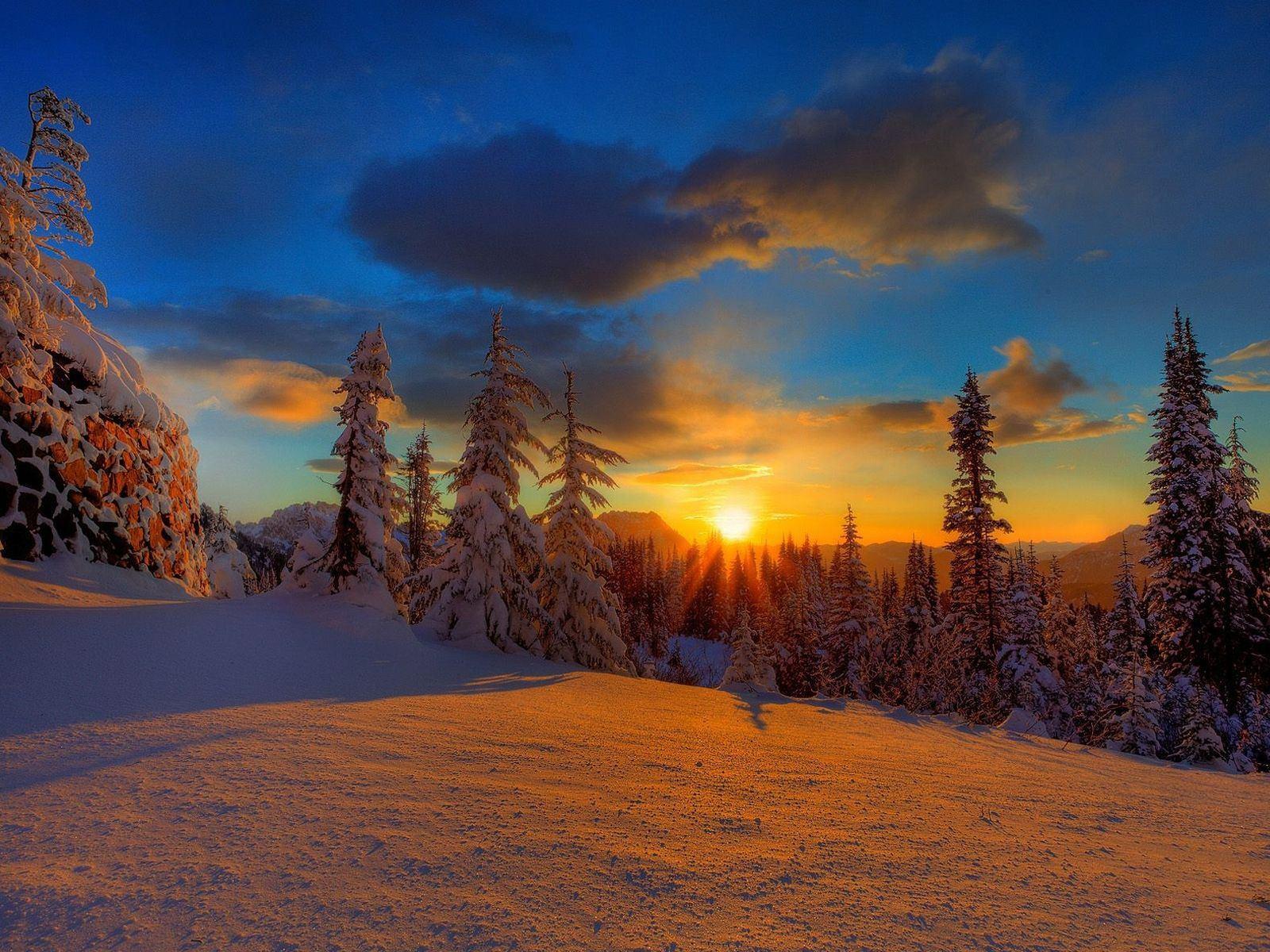 sun_decline_evening_snow_trees_firtrees_shade__x
