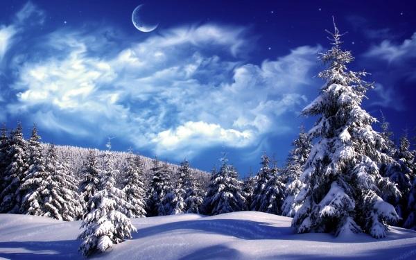 на сніг